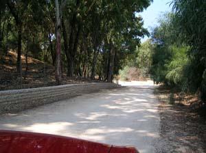 calatubo_02